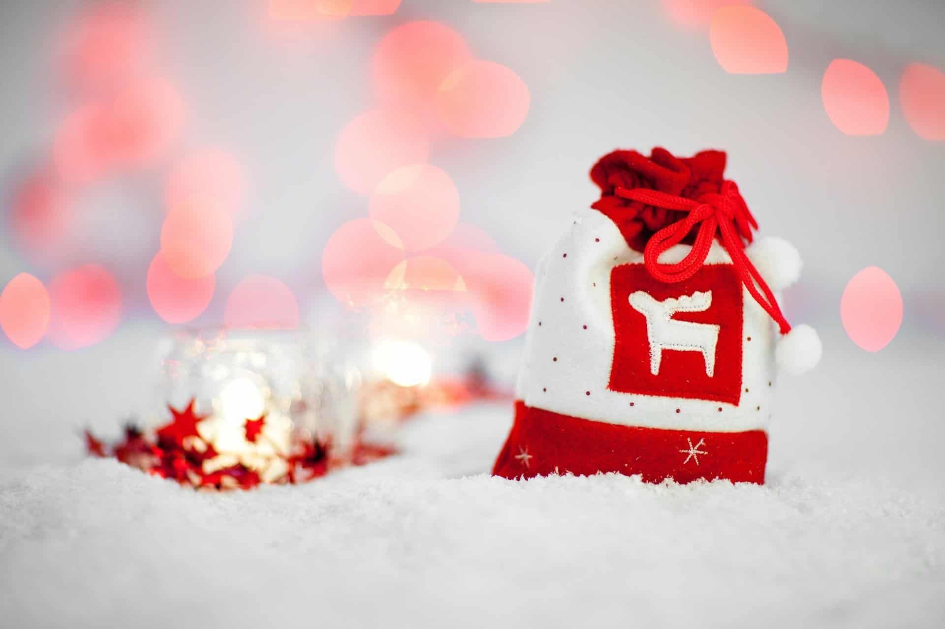 a red and white reindeer bag holds top ten dental gifts